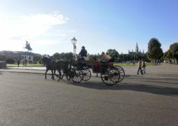Viena en carruaje de caballos